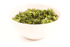 Green spring herb. Fennel and parsley in the plate royalty free stock photo