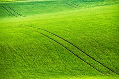 Green spring hills. Rolling spring fields. Arable lands in Czech Moravia Stock Photos