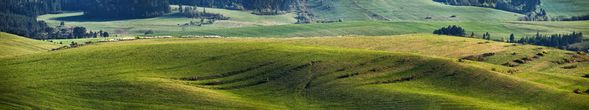 Green spring hills in Slovakia. April sunny countryside panorama. Green spring hills in Slovakia. sunny countryside panorama Stock Photo