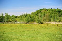 Green spring landscape Royalty Free Stock Photos