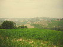 Green spring landscape in the countryside on a cloudy day; retro style Royalty Free Stock Photography
