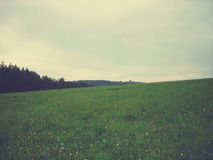 Green spring landscape in the countryside on a cloudy day; retro style Stock Photography