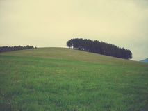 Green spring landscape in the countryside on a cloudy day; retro style Royalty Free Stock Image
