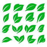 Green spring leaf icons set, stock vector illustration. Eps 10 Stock Illustration