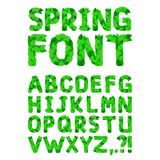 Green spring leafs font. Vector Illustration Royalty Free Stock Photography