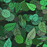 Green spring leafs - seamless pattern. Vector endless floral nature ornament. Stock Photography