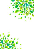 Green spring leaves vector poster background Royalty Free Stock Images
