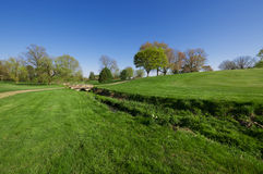 Green in spring. Green meadow and trench with trees in the background Stock Images