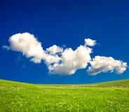 Green spring meadows Stock Photo