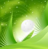 Green Spring Night Stock Images