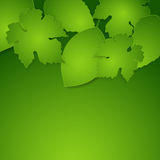 Green spring paper leaves background Royalty Free Stock Photos