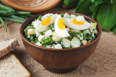 Green spring salad with chopped garlic and ramson Stock Photos