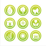 Green spring signs. Set of 9 green spring signs Stock Image
