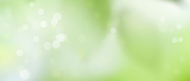 Green spring summer background - sunny and fun - Bokeh texture pt1. Sunny weather - summer mood - green background with lights Royalty Free Stock Image