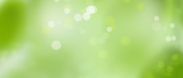 Green spring summer background - sunny and fun - Bokeh texture pt4. Sunny weather - summer mood - green background with lights Royalty Free Stock Images