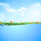 Green spring time background with flowers, nature summer floral wallpaper. Stock Photo