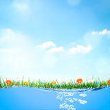 Green spring time background with flowers, nature summer floral wallpaper. Stock Photos