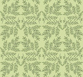 Green spring twigs pattern. Green gentle spring twigs pattern Royalty Free Stock Photography