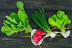 Green spring vegetables and herbs Royalty Free Stock Photo