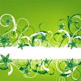 Green springlike vintage design Royalty Free Stock Photos