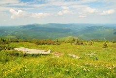 Green springtime hills and mountains Stock Images