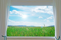 Meadow and window Royalty Free Stock Images