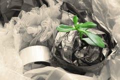 World plastic pollution concept stock photos