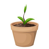 Green sprout in the clay flowerpot. Vector illustration. Royalty Free Stock Photography