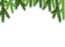 Green spruce branch on white background. Fir. Realistic Christmas tree. Vector illustration for Xmas  and New year cards, banners, flyers,  party posters Royalty Free Stock Images