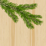 Green spruce branches on the background nature of wood. illustration. Green spruce branches on the background nature of wood. vector illustration Royalty Free Stock Photo