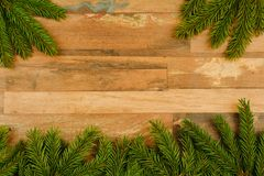 Spruce branches on wooden boards royalty free stock photo
