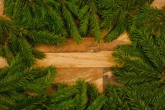 spruce branches on a wooden background royalty free stock image