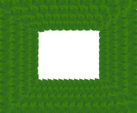 Green square frame from leaves Royalty Free Stock Image