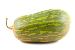 Green squash Stock Images
