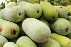 Green squash Royalty Free Stock Photo