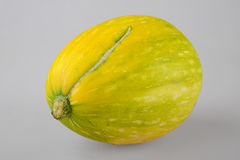 Green squash isolated on white Royalty Free Stock Photos