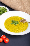 Green squash soup with parsley Stock Images