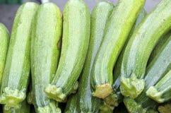Green Squash Stock Photo
