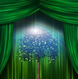 Green stage tree. Tree before green stage curtains Royalty Free Stock Photography