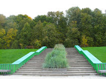 Green staircase in the Moscow park. Green grass, autumn trees and a staircase royalty free stock photos