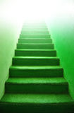 Green stairs - indoor green carpet step Stock Photography