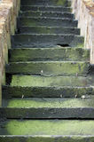 Green stairs Royalty Free Stock Photos