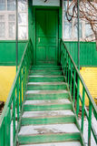 Green stairway to the wooden green door in the Royalty Free Stock Photography
