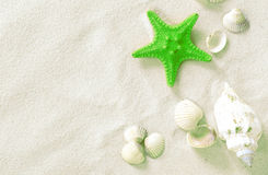 Green Starfish Royalty Free Stock Images