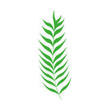 Green stem with many leaves. Vector illustration Royalty Free Stock Photos