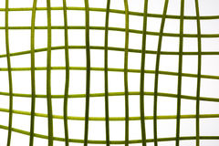 Green stems in grid Royalty Free Stock Images