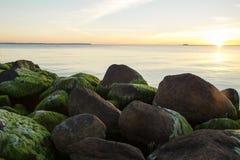 green stenar arkivfoto
