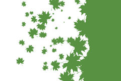 Green stencil leaf pattern on white Royalty Free Stock Photos