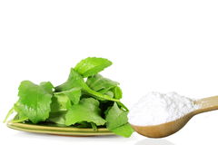 green Stevia and extract powder in wooden spoon on white background Royalty Free Stock Photography