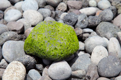 Green stone as background Royalty Free Stock Photos